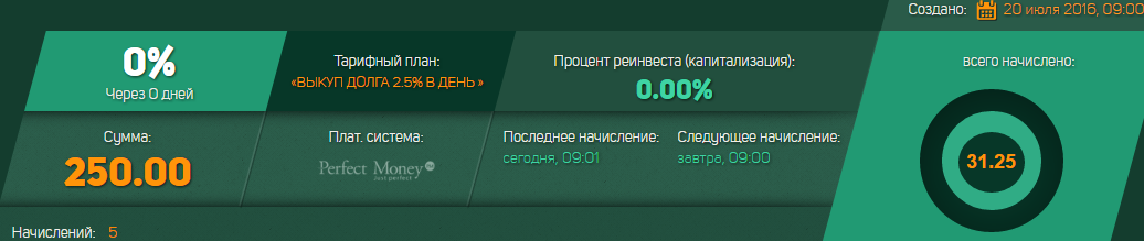 Мой вклад в Ssarini Limited